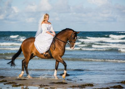 trash the dress beach horse photo shoot bride jersey