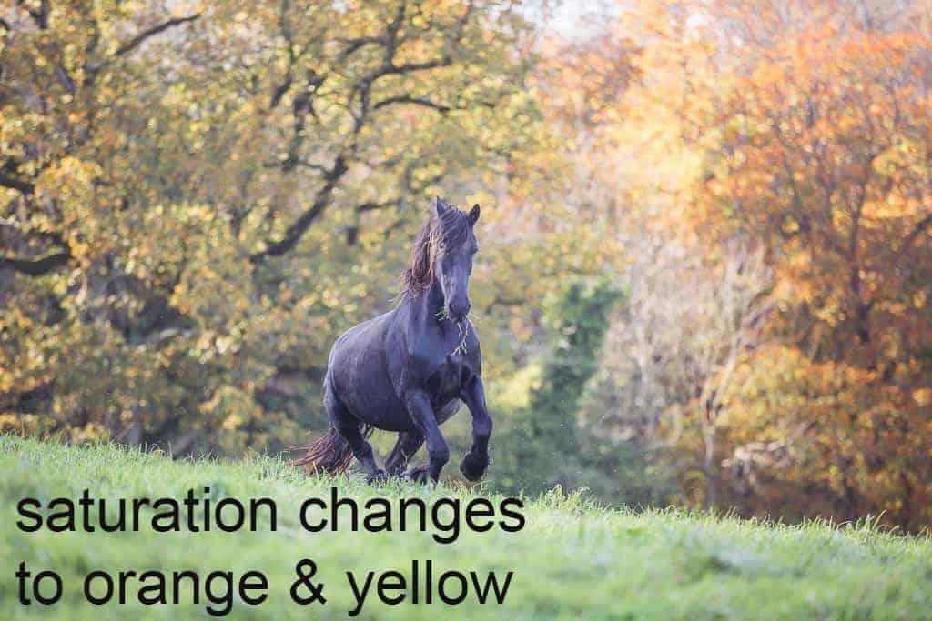saturation changes