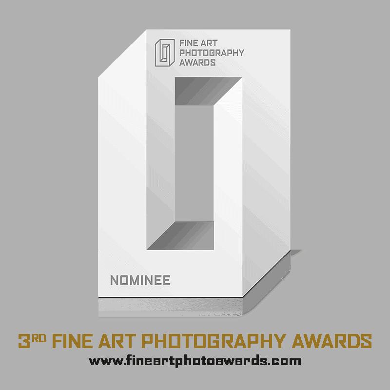 2017 Fine Art Photography Awards Shortlisted