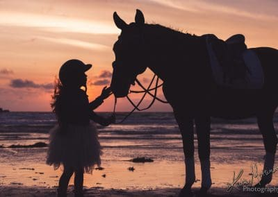 horse equine portrait wiltshire hampshire katie mortimore summer beach sea sunset