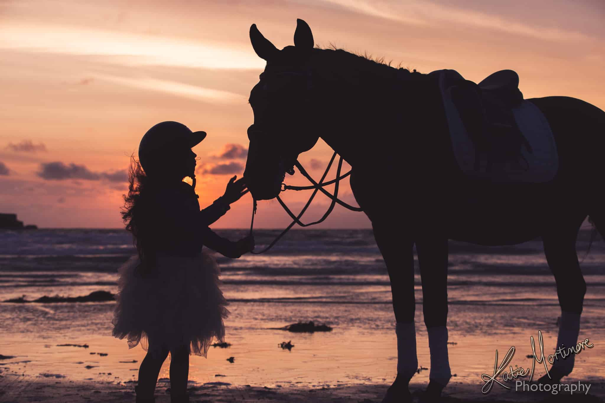 horse equine portrait wiltshire hampshire katie mortimore summer beach sea sunset Jersey