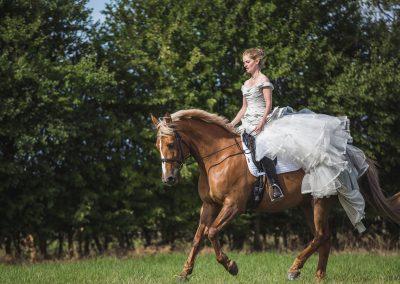 Vicky-Pete-cherish-dress-equine-canine-session-103
