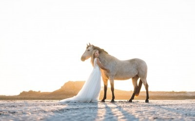 Charlotte & Barry – Jersey Equine Cherish The Dress Session